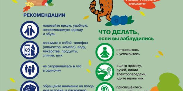 listovki_16