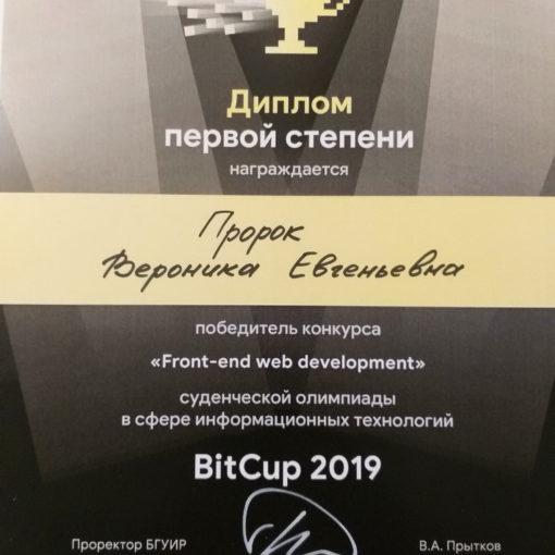 I место в студенческой олимпиаде BIT-Cap 2019