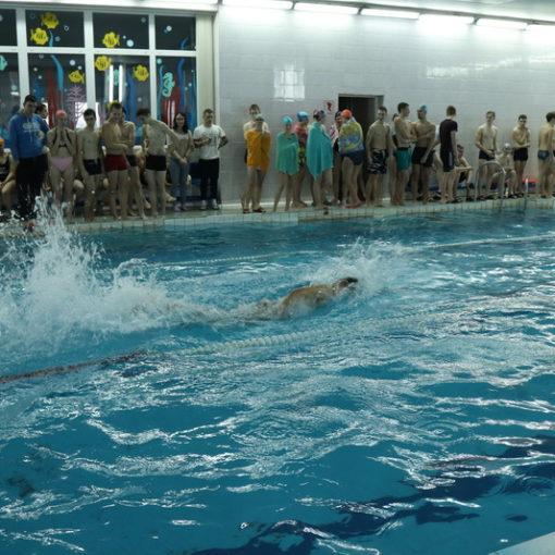 Новый профориентационный проект филиала - I областная школьно-студенческая плавательная лига