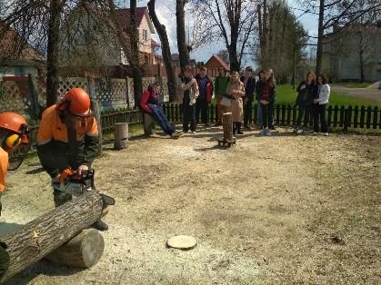 Профориентация Лесное хозяйство и технология деревообработки